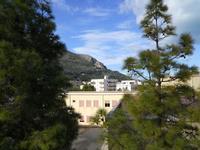alle falde del Monte Inici - 11 dicembre 2009  - Castellammare del golfo (2146 clic)