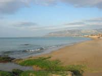 spiaggia di levante - golfo di Castellammare - 1 marzo 2009  - Balestrate (3227 clic)