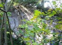 Bosco d'Alcamo - Riserva Naturale Orientata - sul monte Bonifato: La Funtanazza, grande serbatoio pubblico di età medievale - 8 dicembre 2006  - Alcamo (2206 clic)
