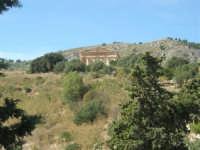 il tempio - 4 ottobre 2007  - Segesta (1898 clic)