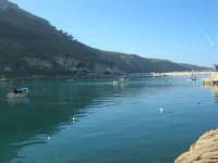 al porto: escono le barche dei pescatori - 3 marzo 2008  - Castellammare del golfo (570 clic)