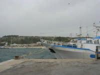 il porto - 29 marzo 2009   - San vito lo capo (1764 clic)