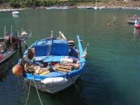 al porto: le barche dei pescatori - 2 ottobre 2007  - Castellammare del golfo (590 clic)