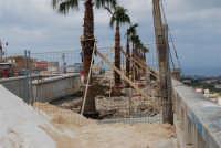 Piazza Bagolino - lavori in corso: la posa delle palme - 25 febbraio 2008   - Alcamo (1073 clic)