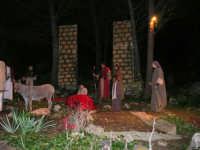 Parco Urbano della Misericordia - LA BIBBIA NEL PARCO - Quadri viventi: 8. Gesù entra in Gerusalemme - 5 gennaio 2009   - Valderice (2586 clic)