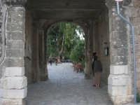 l'ingresso del Baglio Isonzo - 19 settembre 2007  - Scopello (947 clic)