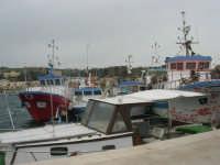 il porto - 29 marzo 2009   - San vito lo capo (1639 clic)