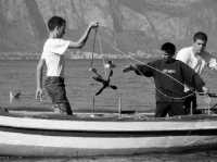 piccoli marinai crescono..  - Aspra (4090 clic)
