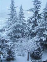 Ragusa sotto la neve RAGUSA Emilia Attanasio