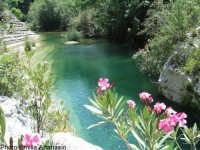 Laghetti  - Cava grande del cassibile (11124 clic)