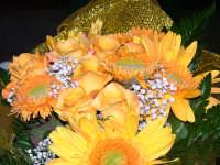 Primavera  - Villafranca tirrena (3906 clic)