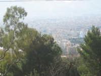 uno sguardo alla città da monte pellegrino  - Palermo (4069 clic)