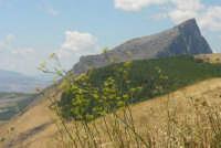 Rocca vista dal lato ovest. PIANA DEGLI ALBANESI GAETANO FERRUCCIO MILLOCCA