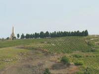Pianto Romano. La montagna che fu teatro della battaglia di Calatafimi tra i Mille di Garibaldi e i Borboni nel 1860. Obelisco in ricordo dell'evento storico. Particolare dell'obelisco e del viale alberato.     - Calatafimi segesta (12768 clic)