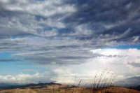 Prima della tempesta PALAGONIA SALVINA  FAVARA