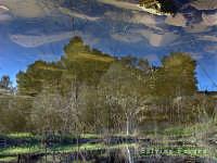 C/da Montagna. Riflesso in una pozza d'acqua  - Scordia (4299 clic)