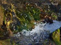 Torrente Oxena, particolare della luce riflessa  - Militello in val di catania (2553 clic)