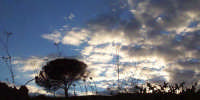 Studio di nuvole  - Militello in val di catania (2126 clic)