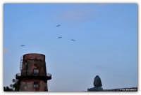Arenella (PA) - Tonnara Florio - osservando i gabbiani a volteggiare sopra la torre   - Palermo (2137 clic)