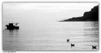 Mondello (PA) - uno sguardo sul mare del golfo di Mondello  - Mondello (2088 clic)
