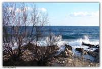 Mondello - (Pa) - L'affascinante costa rocciosa dell'Addaura  - Mondello (2330 clic)
