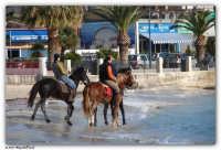Mondello - (Pa) - Passeggiata a cavallo sulla spiaggia (I)  - Mondello (5355 clic)