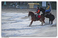 Mondello - (Pa) - Passeggiata a cavallo sulla spiaggia (II)  - Mondello (3870 clic)