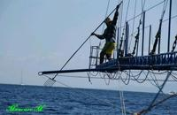 pesca del pesce spada nello stretto  - Ganzirri (11565 clic)