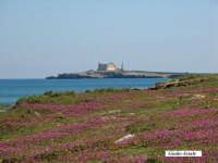 Isola di Capo Passero.  - Portopalo di capo passero (2417 clic)