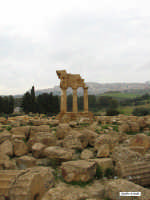 Valle dei Templi  - Agrigento (2398 clic)