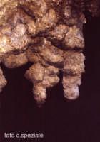 Formazione all'interno della Grotta del Lauro (comunemente detta del crasto).   - Alcara li fusi (5855 clic)