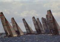 Regate di flotta  - Trapani (2062 clic)
