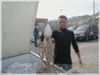 capannone-pesci... oltre me..che fotografa...lo fa anche mio figlio  - Licata (4171 clic)