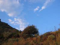 Isole Eolie, Salina, Leni  - Salina (3721 clic)