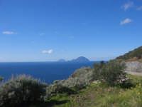 Isole Eolie, Salina - Vista panoramica da Rinella, sullo sfondo Alicudi e Filicudi  - Salina (4358 clic)