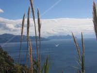 Isole Eolie, Salina - Vista panoramica da Rinella, sullo sfondo Lipari e Vulcano  - Salina (4502 clic)