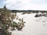 Playa Grande  - Marina di ragusa (10800 clic)