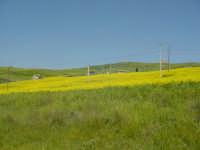 Il verde, il giallo, il rosso ed altri mille colori, caratterizzano il paesaggio delle Madonie nel p