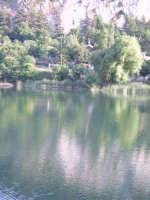 laghetto Piano Zucchi riflessi sull'acqua  - Isnello (2739 clic)