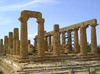 Tempio di Giunone  - Valle dei templi (4567 clic)