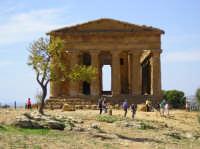 Tempio della Concordia  - Valle dei templi (4657 clic)
