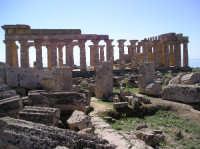Tempio F  - Selinunte (4224 clic)