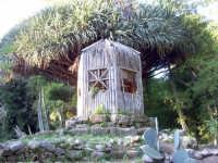 Orto botanico PALERMO Salvatore Riva