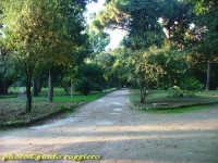 Orto Botanico PALERMO Guido Ruggiero