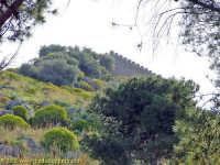 Il Castello  - Cefalù (2809 clic)