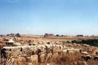 Il parco archeologico  - Selinunte (2577 clic)
