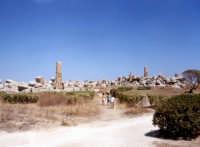 Rovine templi F e G  - Selinunte (2465 clic)