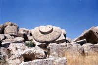 Rovine tempio G: capitello   - Selinunte (3117 clic)