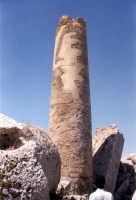 Rovine tempio G: colonna  - Selinunte (2666 clic)