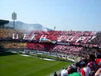 Stadio Renzo Barbera  - Palermo (9668 clic)